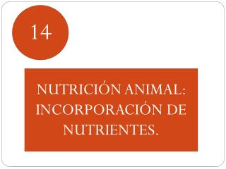 NUTRICI�N ANIMAL:  INCORPORACI�N DE NUTRIENTES.