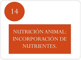 NUTRICIÓN ANIMAL:  INCORPORACIÓN DE NUTRIENTES.