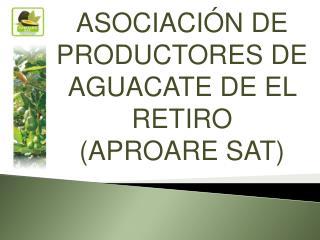 ASOCIACI N DE PRODUCTORES DE AGUACATE DE EL RETIRO  APROARE SAT