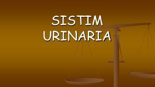 SISTIM URINARIA