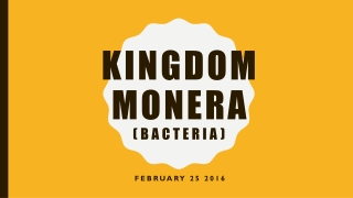 Kingdom Monera