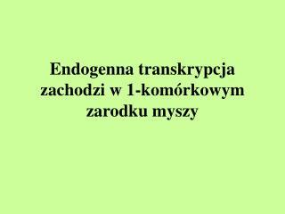 Endogenna transkrypcja zachodzi w 1-komórkowym zarodku myszy