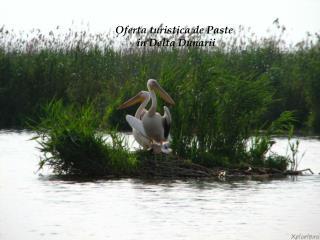 Oferta turistica  de Paste Oferta turistica de Paste                    in Delta Dunarii