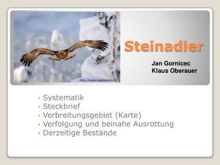 PPT - Steckbrief PowerPoint Presentation - ID:3474397