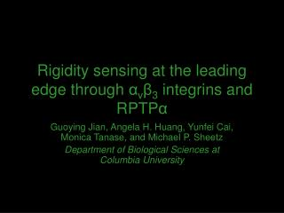 Rigidity sensing at the leading edge through  α v β 3  integrins and RPTP α