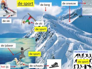 sport sneeuw ijs berg ski schaats