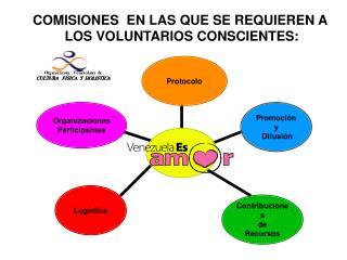 COMISIONES  EN LAS QUE SE REQUIEREN A  LOS VOLUNTARIOS CONSCIENTES: