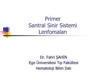 Prim er  Santral  S inir Sistemi  L enf oma ları