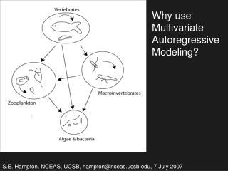 Why use Multivariate Autoregressive Modeling?