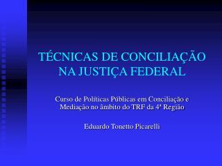 TÉCNICAS DE CONCILIAÇÃO NA JUSTIÇA FEDERAL
