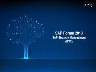 SAP  Forum  2013 SAP  Strategy  Management (BSC)