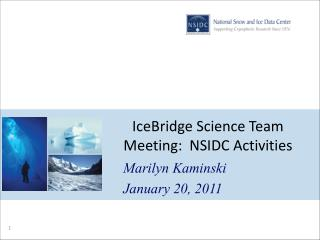 IceBridge  Science Team Meeting:  NSIDC Activities