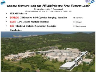 Science frontiers with the FERMI@elettra Free Electron Laser