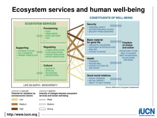 Ecosystem services and human well-being