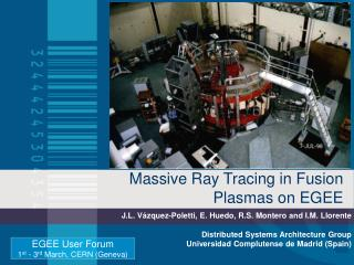 Massive Ray Tracing in Fusion Plasmas on EGEE