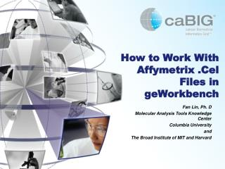 How to Work With Affymetrix .Cel Files in  geWorkbench