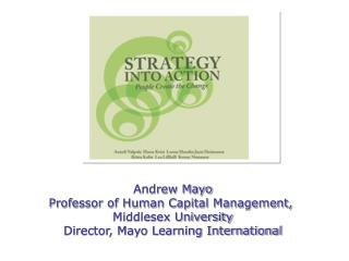 Andrew Mayo Professor of Human Capital Management,  Middlesex University