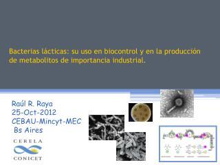 Raúl R. Raya 25-Oct-2012 CEBAU-Mincyt-MEC  Bs Aires