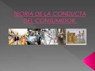 TEORÍA DE LA CONDUCTA DEL CONSUMIDOR.