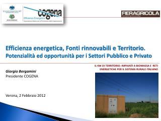 IL KW DI TERRITORIO: IMPIANTI A BIOMASSA E  RETI ENERGETICHE PER IL SISTEMA RURALE ITALIANO