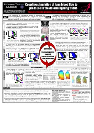 Coupling simulation of lung blood flow to pressure in the deforming lung tissue