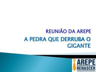 REUNIÃO DA AREPE