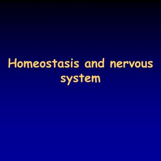 Homeostasis and nervous system