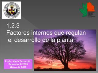 1.2.3 Factores internos que regulan  el desarrollo de la planta