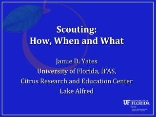 Scouting:  How, When and What