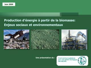 Production d��nergie � partir de la biomasse: Enjeux sociaux et environnementaux