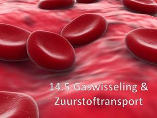 14.5  Gaswisseling & Zuurstoftransport
