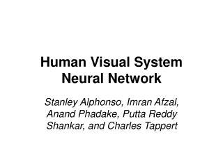 Human Visual System Neural Network