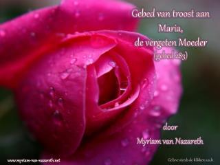Gebed van troost aan  M aria, de vergeten  Moeder  ( gebed 283 )