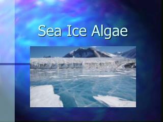 Sea Ice Algae