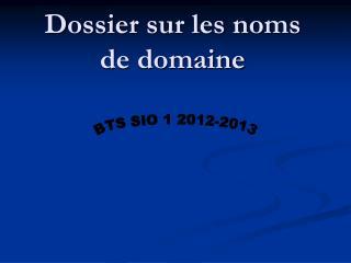 Dossier sur les noms de domaine