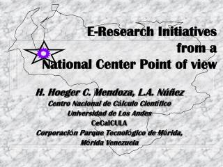 E-Research Initiatives  from a National Center Point of view