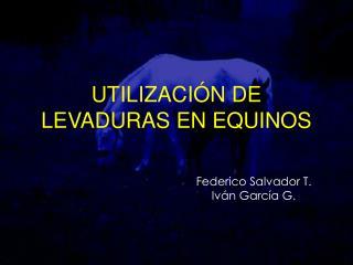 UTILIZACIÓN DE LEVADURAS EN EQUINOS