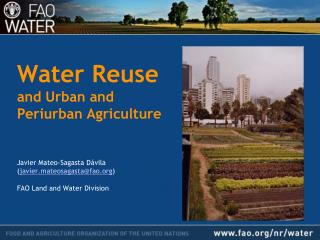 Water Reuse  and Urban and  Periurban Agriculture