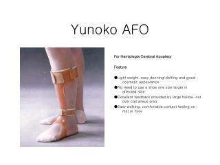 Yunoko AFO