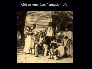 African American Plantation Life