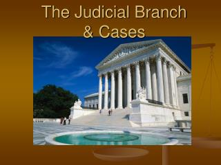 The Judicial Branch  & Cases
