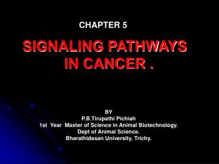 SIGNALING PATHWAYS   IN CANCER .