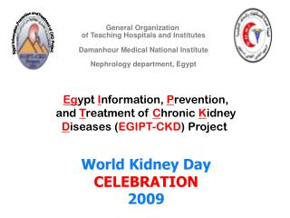 Egypt Information,Prevention andTreatment of CKD Project.