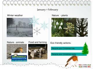 January + February
