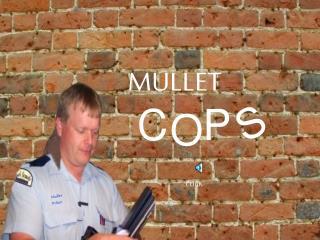 Mullet Police