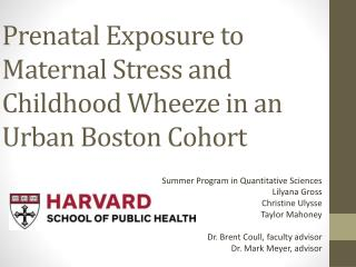 Prenatal Exposure to Maternal Stress and Childhood Wheeze in an Urban Boston Cohort
