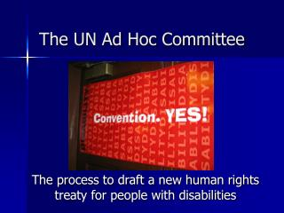 The UN Ad Hoc Committee