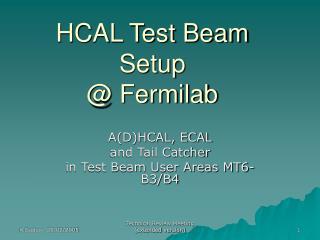 HCAL Test Beam Setup @ Fermilab
