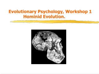 Evolutionary Psychology, Workshop 1   Hominid Evolution.