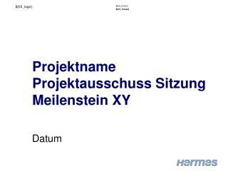 Projektname Projektausschuss Sitzung Meilenstein XY